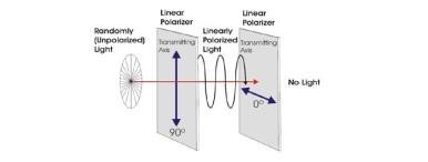 AMOLED vs LCD 5
